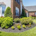 MG_9801-Landscaping, Maintenance, Drainage Solutions, Paver Patios- Frederick MD
