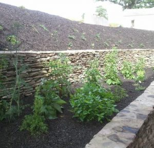 bushes-retaining-walls-mulch1-500x480