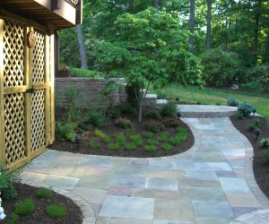 walkway-mulch-bushes-plants-600x500